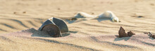 Old Rusty Beverage Can In The Sand Desert. Pollution Of Nature Recycle The Trash. Environment Global Problem. Wide Banner