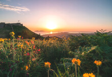 Orange Sunset Over The Sea Of Adriatic, With Flower-covered Hill Slope In The Foreground, And The Albanian City - Vlora