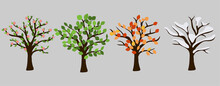 Tree In Four Season Graphic Design. Pink Blossom, Orange Leaves, White Snow And Green Leaves. Isolated Vector Illustation For Each Time Year.