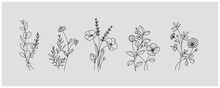 Minimal Botanical Graphic Sketch Drawing, Trendy Tiny Tattoo Design, Floral Elements Vector Illustration