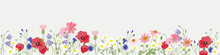 Minimal Background Wild Flower Vector For Spring And Summer Wallpaper