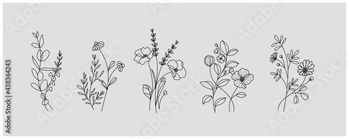 Obraz na płótnie minimal botanical graphic sketch drawing, trendy tiny tattoo design, floral elem