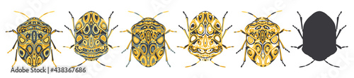 Fotografia Set of stylised, decorative beetle insect vector illustrations, isolated on a white background