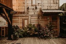 Green Plants Near Wooden House