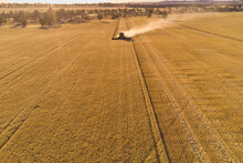 Header Harvesting Barley Crop In The Evening With View Across The Farm Landscape.