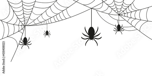 Cobwebs and spiders. Background for Halloween. Vector graphics Fototapeta