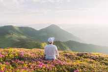A Tourist In White Clothes Sits On A Pink Carpet Of Rhododendron Flowers