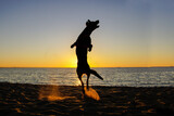 Fototapeta Fototapety z morzem do Twojej sypialni - Pies i zachód słońca