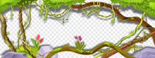 Jungle Liana Vector Green Frame, Tropical Vine Branch Illustration On Transparent Background. Paradise Plant, Green Vegetation, Exotic Flower, Stone, Moss, Tree Trunk. Amazon Rainforest Liana Frame
