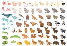Cute Isolated Forest, Sea Ocean, Savannah, Farm, Zoo Animals. Big Set Of Vector Pig Koala Whale Cow Bear Lion Tiger Kangaroo Quokka Wolf Horse Giraffe Hippo Duck Zebra Crab Elephant In Flat Style