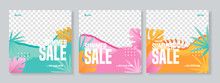 Set Of Three Summer Sale Social Media Pack Template Premium Vector