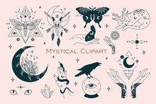 Mystical Celestial Bundle. Outline Witchy Drawing. Isolated Floral Moon. Witchcraft T Shirt Print. Contour Witch Hands. Luna Moth And Butterfly