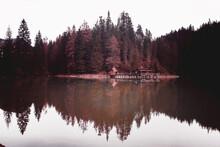 Lago Di Braies, Trentino Alto Adige (BZ), Vista Frontale Con Riflesso Baita