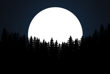 Stars And Silhouette Of Pine Trees. Vector Night Landscape. Stars, Moon, Panorama, Gloomy Forest. Moon Above Silhouettes Of Trees At Night.