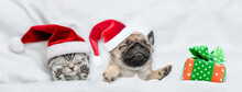 Cute Kitten And Pug Puppy Wearing Santa Hats Sleep Together With Gift Box Under A White Blanket On A Bed At Home. Top Down View