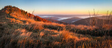 Panorama Alpine Landscape Of The Mountain Peaks And Valleys Covered In Fog At Dawn. Autumn Landscape Mountains And Colorful Forest On Background Sunrise.
