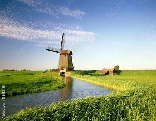 Wallpaper Mural netherlands, polder landscape, alkmaar, canal, windmill, europe, holland, landsc
