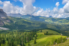 Beautiful View Of A Forest Plateau In The Alps
