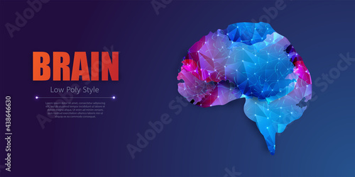 Fotografiet Abstract polygonal human brain