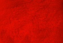 Red Fur Background Close Up View.