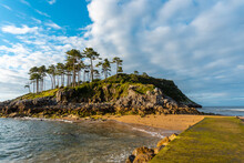 San Nicolas Island At Low Tide In Lekeitio, Basque Country. Bay Of Biscay. Spain
