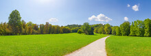 A Relaxing Panorama Of The Green, Lush And Healthy Tivoli Park In A Sunny Day In Ljubljana, Slovenia's Capital. Background.