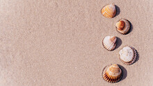 Summer Concept Background With Seashells, Shells On Sand Tropical Sea Beach. Design Of Summer Vacation Holiday Concept.