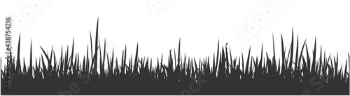 Photographie Grey horizontal banner of wavy meadow silhouette with grass