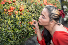 A Curious Transgender Woman Inspects Some Santan Flowers. Of Southeast Asian Descent. Garden Setting.