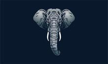 Sumatran Elephant Portrait On Dark Background