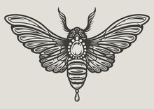 Vector Illustration Of A Moth In Decorative Style