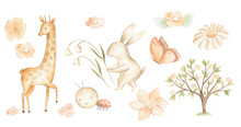 Watercolor Woodland Baby Animals Spring Pastel Color Illustration For Nursery