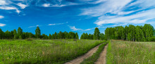 Country Pathway Through Wild Flowers Meadow, Fresh Spring Forest At Horizon, Blue Sky With White Cirrus Clouds, Sunny Summer Day Panoramic Landscape