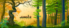 A Bird Sitting On Jungle Vector Text Message In The Middle Of A Jungle.