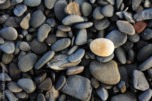 Fotografía Smooth stones washed up on maine beach