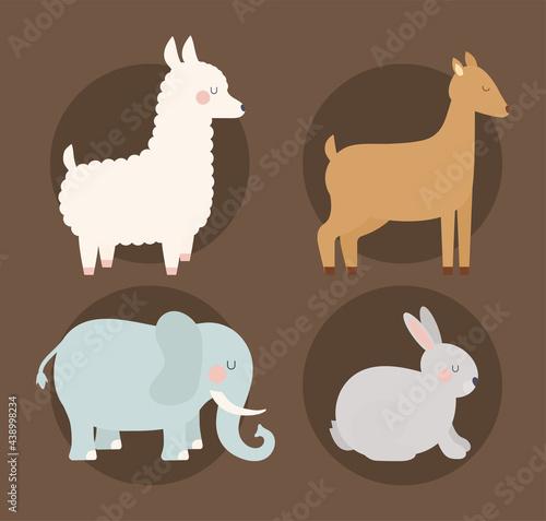 Fototapeta premium four animals illustration