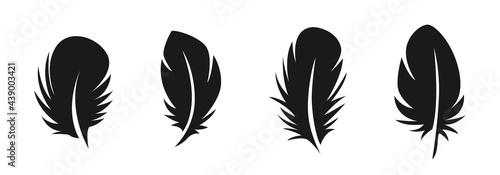 Fotografiet feather icon