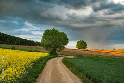 Wiosenny deszcz