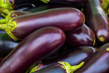 Brinjal Eggplant Aubergine Purple Green Wet Dry Market Hawker Food Stall Vendor Grocery Shopping Fruits Vegetables Seafood Poultry Meat Cooked Raw Fresh Uncooked