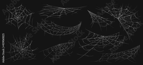 Fotografía Realistic spider web