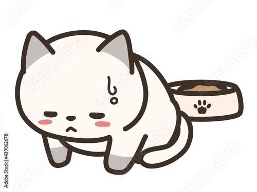 Obraz na płótnie 食欲の無い猫 体調不良