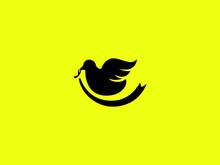 Line Art Bird Vector Bird Logo Design Template Black Bird Icon Bird Logo Hipster Vintage Retro Vector Icon Illustration Bird Logo Design Vector Template. Bird Icon Vector Concept Bird Flying Logo Bird