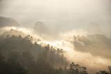 Fototapeta Na ścianę - sunrise in the mountains , sea of fog ,  Doi Ta Pang  - Thailand