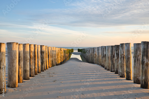 Fotografie, Obraz Horizontal view on two rows of pile heads leading towards the North sea at sunset during ebb in summer