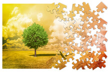 Lone Tree In A Green Meadow - Environmental Conservation Concept In Jigsaw Puzzle Shape