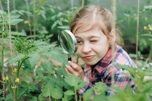 Fotografia Handsome kid girl Naturalist Scientist Explores Plant Life and Insect Life with Magnifying Glass