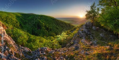 Fototapeta Mountain forest panorama at sunset - Slovakia