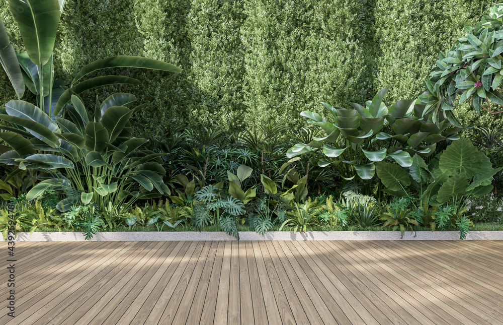 Leinwandbild Motiv - onzon : Empty wooden terrace with green wall 3d render,There are wood plank floor with tropical style tree garden background sunlight shine on the tree