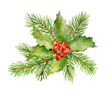 Watercolor Christmas Holly With Red Berries And Spruce Branches Isolated On White Background.