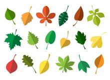 Simple Autumn Leaves